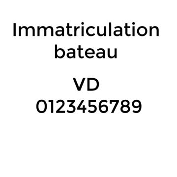 Autocollant d'immatriculation (vendu à l'unité)
