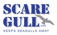 Scare Gull